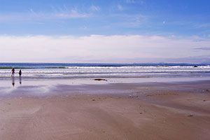Sandy beaches, Pacific Rim National Park Slideshow