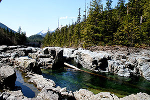 Rock Pools. Drive to Ocean Mist Guesthouse B&B, Highway 4, Ucluelet, BC