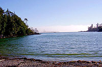 Little Beach, Ucluelet Bed Breakfast B&B, Ocean Views, Kitchenettes, Beaches, Wild Pacific Trail, Storm Watching, Private, Friendly Hosts, Ocean Mist Guesthouse, Ucluelet, BC