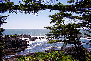Open Pacific Ocean Views, Wild Pacific Trail, Ocean Mist Guesthouse B&B, Ucluelet, BC