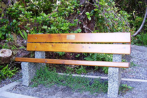 Relax on a Bench, Wild Pacific Trail, Ocean Mist Guesthouse, Ucluelet, BC